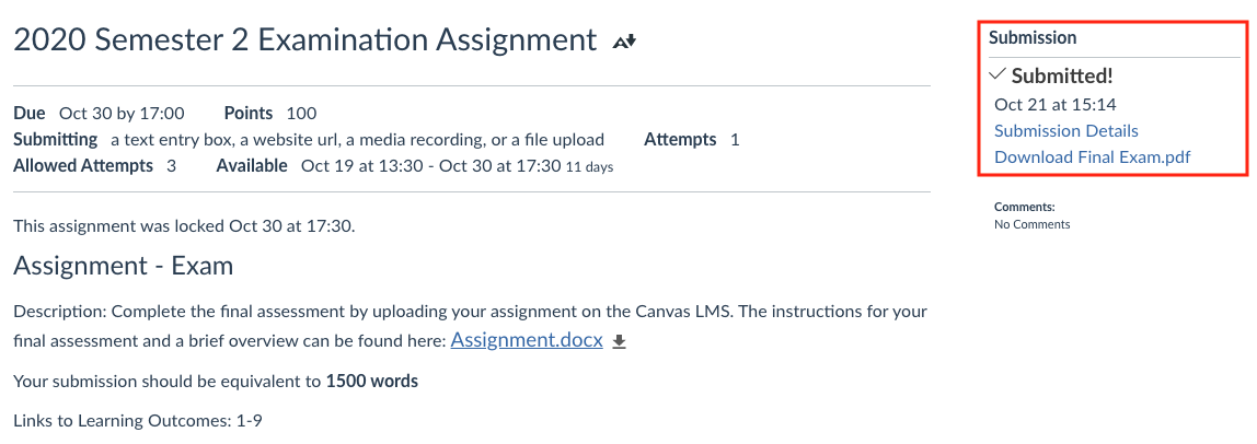 A screengrab of the submission page of a Canvas assignment, showing the confirmation of submission in the top right corner