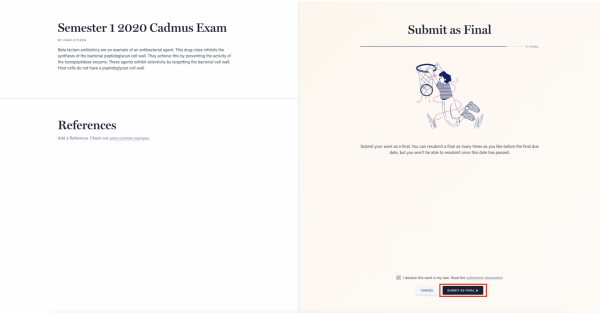 Final Cadmus exam submission in the LMS