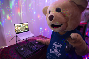 Barry the bear DJing at home