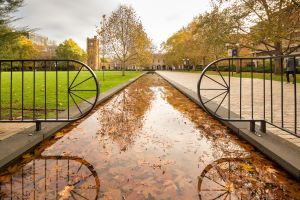 Photograph of the South lawn moat in Parkville Campus for Zoom background