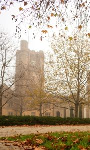 Photograph of Old Quad Garden and the Clock tower for phone background